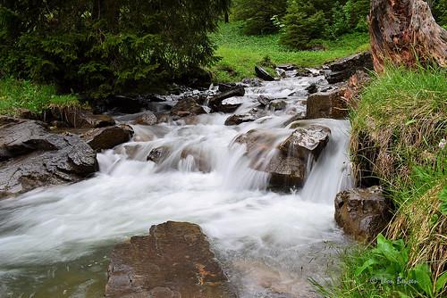 0301 mountain brook