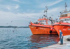 FIshing boats in Rovinj, Croatia