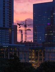 Construction Cranes at Dawn