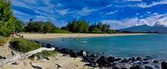 Kanaha Beach Panorama