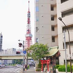 Small #Jinja and #TokyoTower #東京タワー #tower #鳥居 #Torii #Shintoshrine #Japan #日本 #東京 #Tokyo #港区 #minatoku