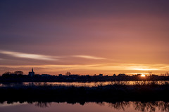 Morning Colors in Camargue