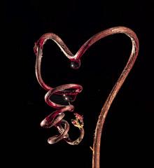 heart-18