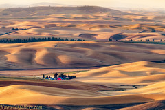 Sunrise over the Palouse country of Eastern Washington with farm and red barn