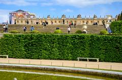 78285-Versailles