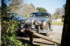 Jaguar MK2 front