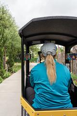 Riding the Train at the Abilene Zoo