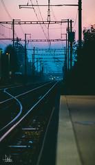 Pastel Railway Selection