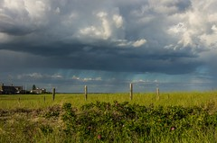 Image by Bud in Wells, Maine (65039623@N05) and image name Summer Showers photo