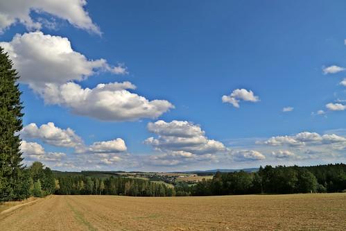 Vogtland mit Blick aufs Erzgebirge
