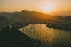 Mellow Rio
