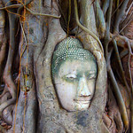 THE ENIGMATIC SMILE OF BUDDHA