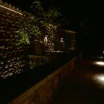 Late night Aman  (MF Pro400H)