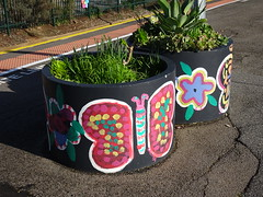 Platform Plants