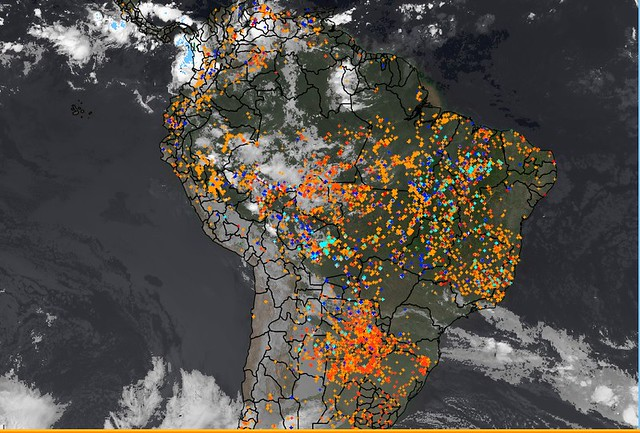 Em agosto, queimadas devastam área 300% maior do que em 2018
