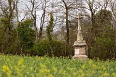 Croix au bord d'un champ à la Motte-Ternant