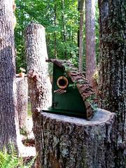 New DIY birdhouse
