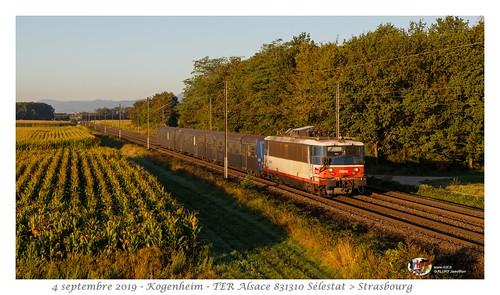 BB25602 IDF - Kogenheim