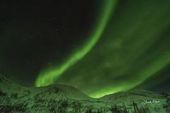 Auroras Boreales Isla de Senja