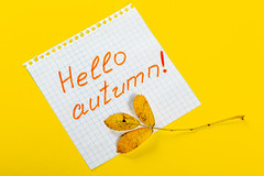 Tag with the words Hello Autumn and a colorful autumn leaf on yellow background