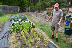 Don Morrison with vegetable garden