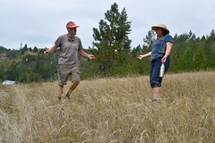 Landowner Don Morrison and Kelpie Wilson of Wilson Biochar Associates in pasture