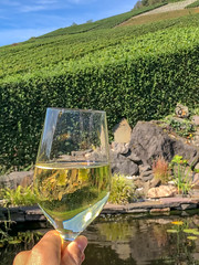 Hand holding a champagne glass, landscape and pond in the background