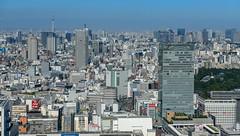 70791-Tokyo