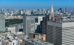 70800-Tokyo