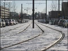 Voie de tramway – Setram (Société d'Économie Mixte des TRansports en commun de l'Agglomération Mancelle)