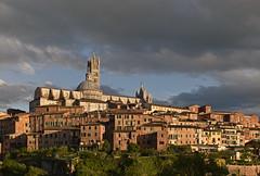 Italy - Siena - view of Duomo