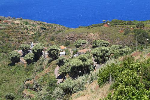 La Palma - Mirador de La Tosca