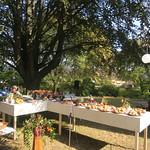 2019 - Picknick-Gottesdient
