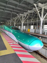 Hayabusa bullet train