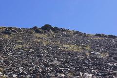 Nuria Valley
