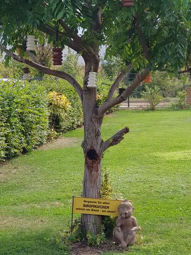 Vergessen Sie alles! Baumkuchen wächst am Baum - wo sonst?