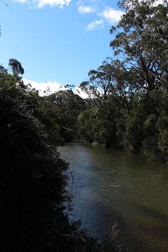 Wildes Meadow Creek