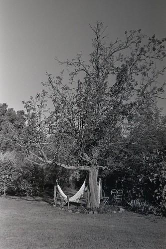 Hamaca paraguaya - Paraguayan hammock