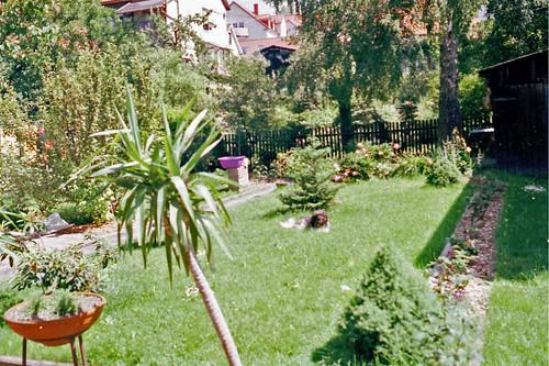 065-Garten Zella-Mehlis