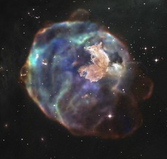 LMC N63A in X-ray and Visible Light
