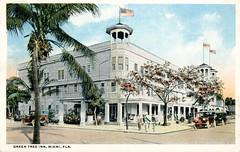 Green Tree Inn Miami Florida Vintage Postcard
