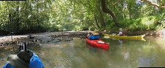 Kayak trip on Patuxent River