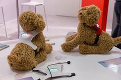 Stoffhunde tragen das smarte Hundegeschirr vin inupathy: Weltweit erster mentaler Visualizer für Hunde, basierend auf ihrer Herzfrequenzmessung
