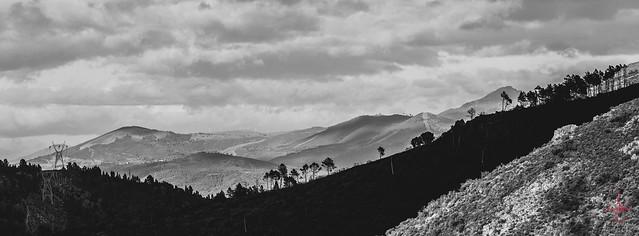 Entre Lugo e Ourense.