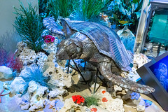 Recycelte Kunst aus Metall und Plastik: Skulptur einer Meeresschildkröte, erstellt vom Maler Tarkan Güveli
