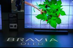 Bravia Oled 8K UHD Fernseher in stylischem Design, mit drehbaren Standfuß