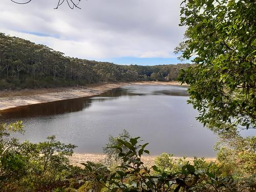 Lake McKenzie Track