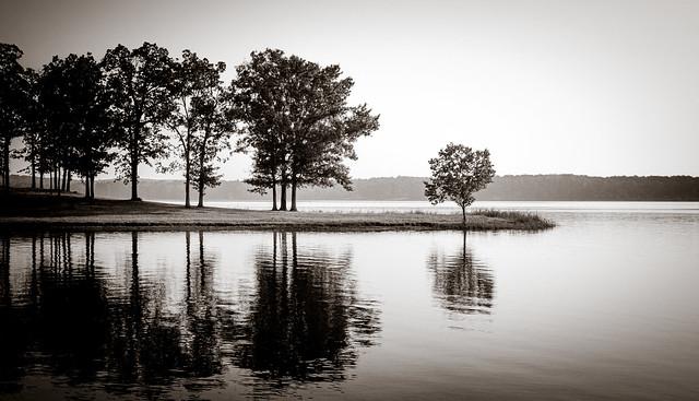 Cypress Lake Point