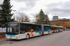 AVL / MAN Lion's City G n°1198 - Emile Frisch et Volvo 7700A II n°48