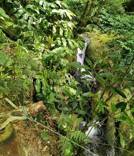 senderismo Salto do Prego y arroyo Faial do Terra Isla San Miguel Azores Portugal 02